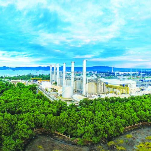Nat Gas Plant Thumbnail small